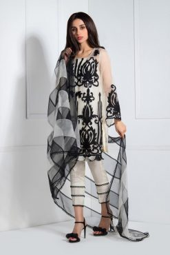 Sehrish Rehan embroidered winter collections in organza party wear 2020